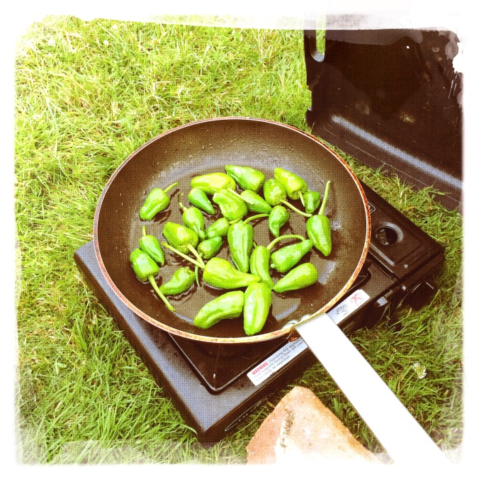 Cooking Padron Peppers on the camping stove