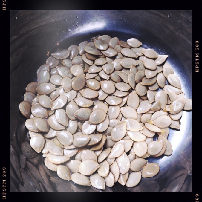 Harlequin Squash Seeds
