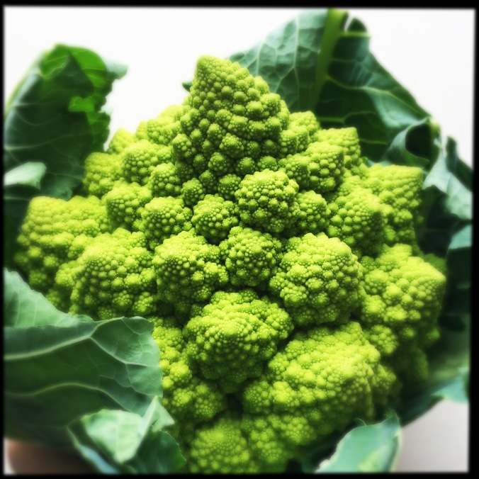 Romanesco Cauliflower - natural approximation of a fractal