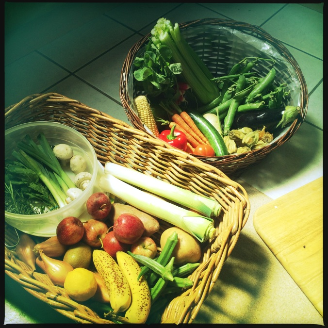 Selection of fruits, vegetables and herbs