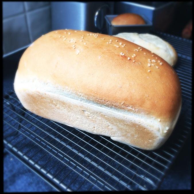 Standard Loaf