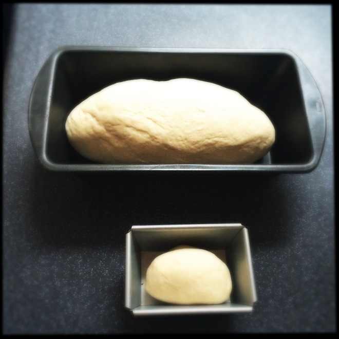 Bread dough ready for baking