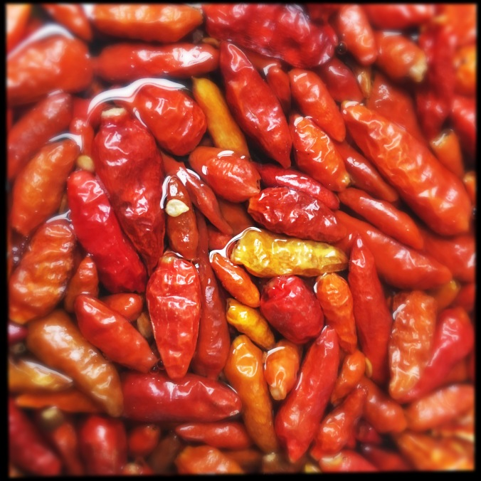soaking chilli peppers