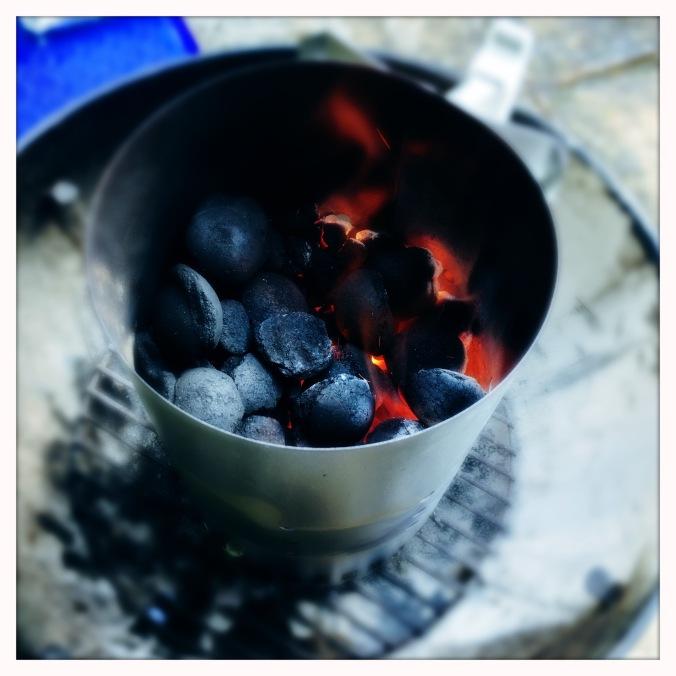 weber coal starter